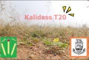 Vasan Estates' Kalidas T20 Tournament