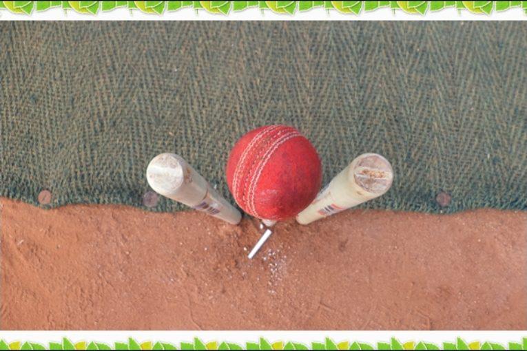 Domestic Cricket - Vels Arena
