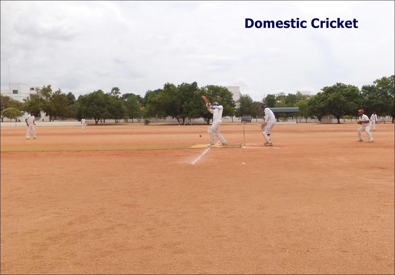 Domestic Cricket