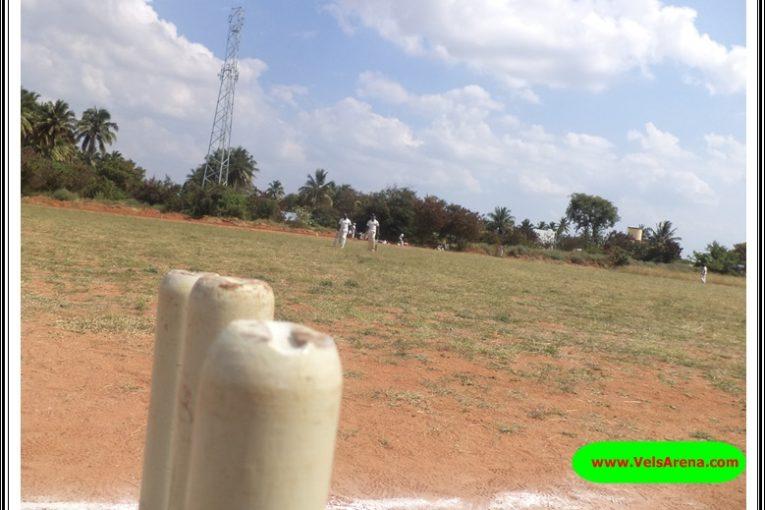 Cricket in Tamil Nadu