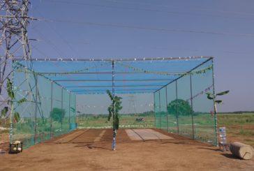 Pongalur CC Nets