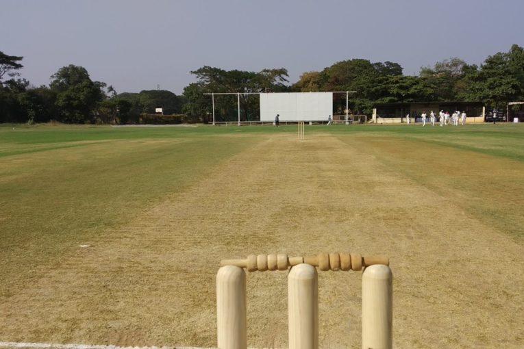 TN Cricket