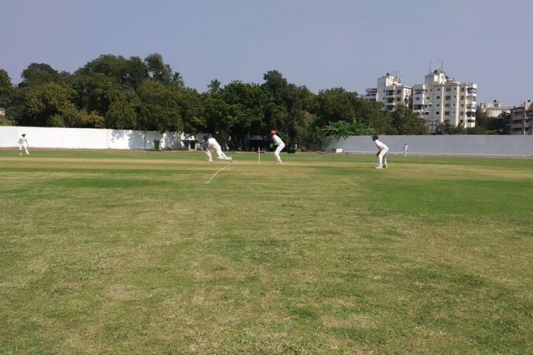 TN Cricket MRF